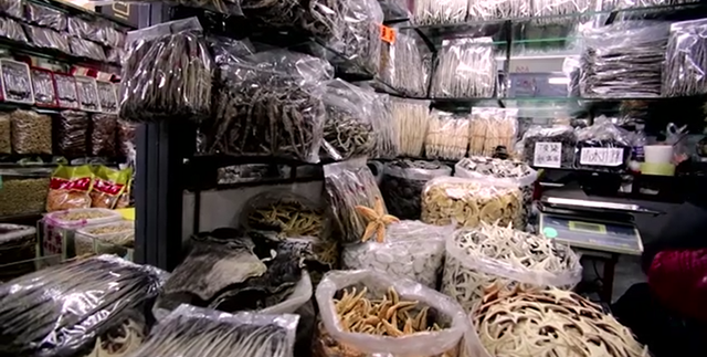 In this screenshot from the movie '6', animals parts from numerous endangered species are shown in a market in China. Photo: Oceanic Preservation Society