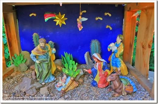 131203_TucsonBotanicalGarden_159