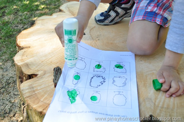 Tree Shapes Worksheet Outdoor Activity
