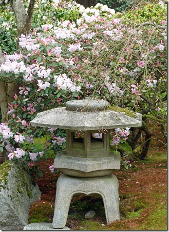 Japanese Gardens in the Spring 1