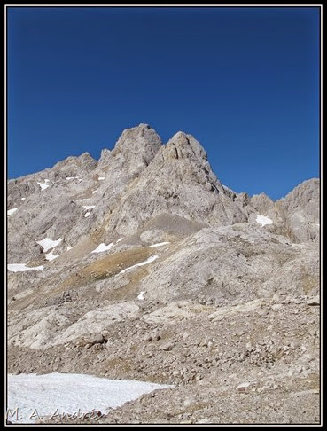 Picos 294