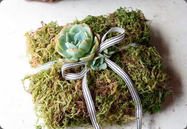 ring bearer 993586_10151720570060152_813494394_n flora organica designs