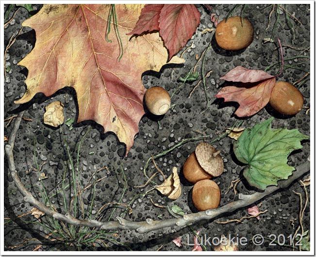 pathless woods for blog