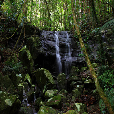 Waterfall, Coomera Circuit