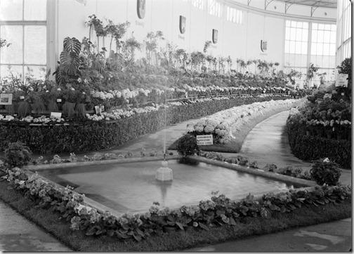 Expo Floricultura.5