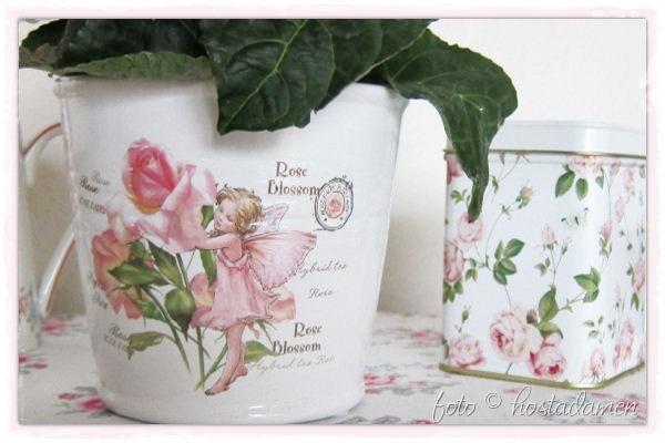RoseBlossom