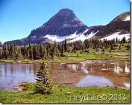 Hidden Lake and Highline Trails 041