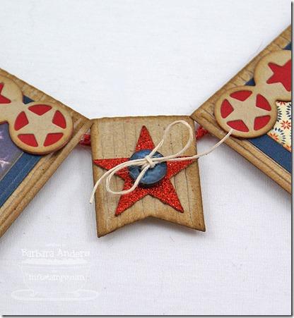 USAbannerStar_2013jul2