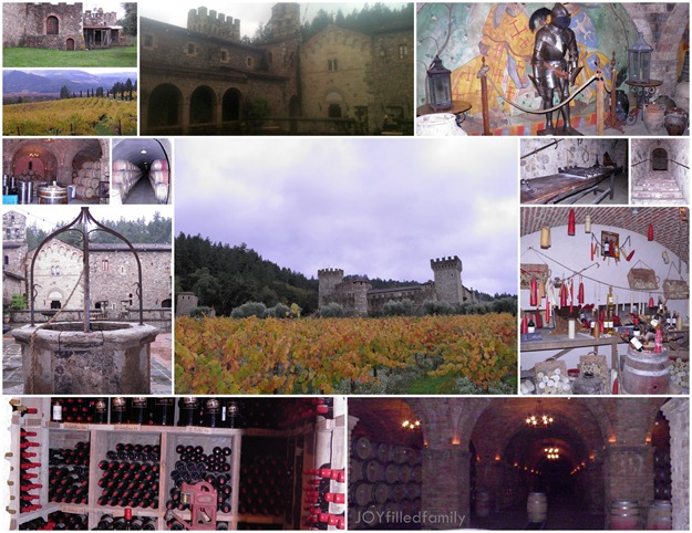 castellodiamorosa collage