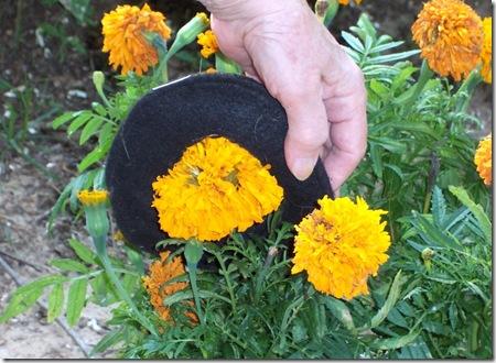 granny flowers 004