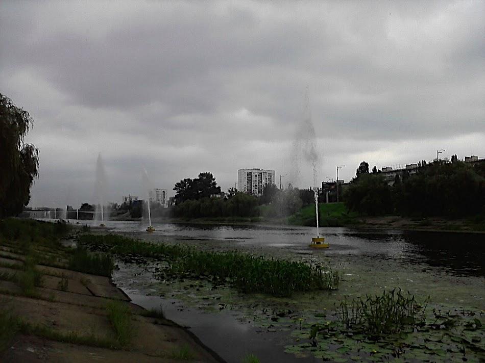 P200811_12.04.jpg