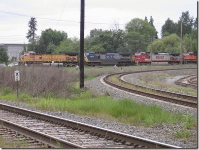 IMG_6312 BNSF Freight Train at Peninsula Jct on May 12, 2007