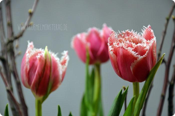 FF (03) gelbe Protea, gefüllte Tulpen, Kirschzweige und rosa Gänseblümchen