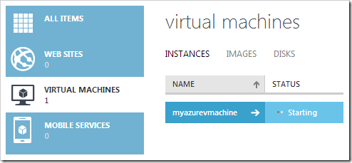 Waiting for the virtual machine to start.