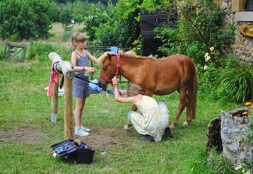 pony's verzorgen