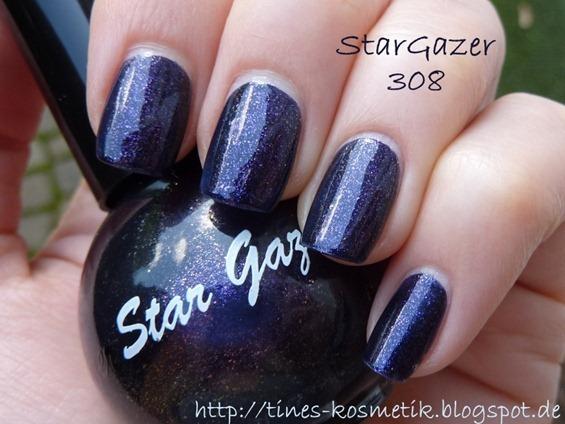 StarGazer 308 1