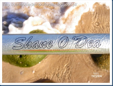 Shane-graphic2