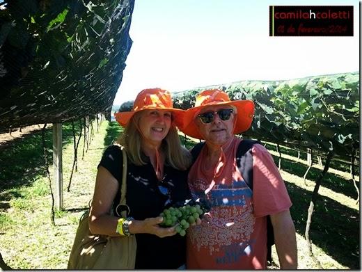 vinicola-goes-vindima-2014-vinho-e-delicias9a