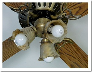 Ceiling Fan Before Close-up (2)