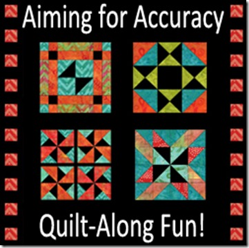 aiming-for-accuracy-qal-250