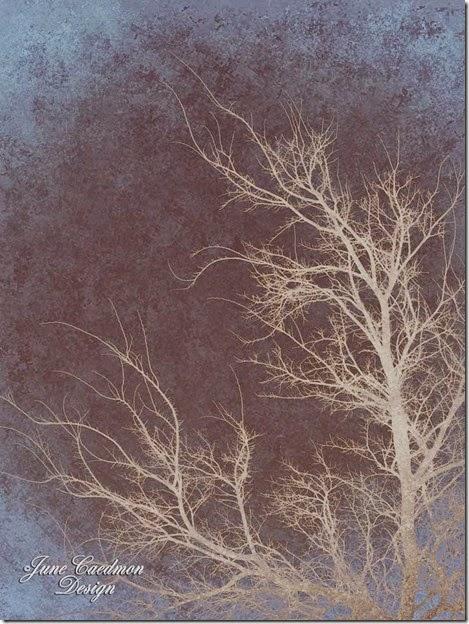 WinterTree_earth