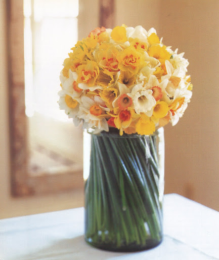 Before inserting the bouquet into a vase, cut the stems as evenly as possible, and give them a slight twist. A clear jar reveals the swirl of green stems -- a perfect foil for the yellow flowers. (The Best of Martha Stewart Living -- Arranging Flowers)