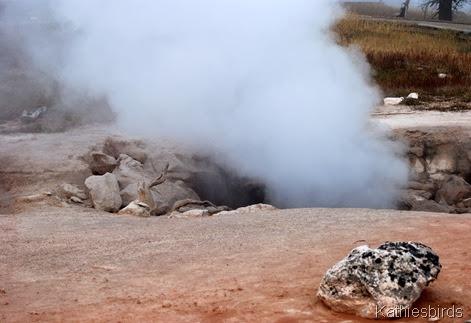 9. steaming-kab