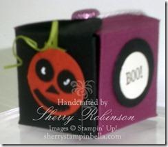 halloween box teresa 004