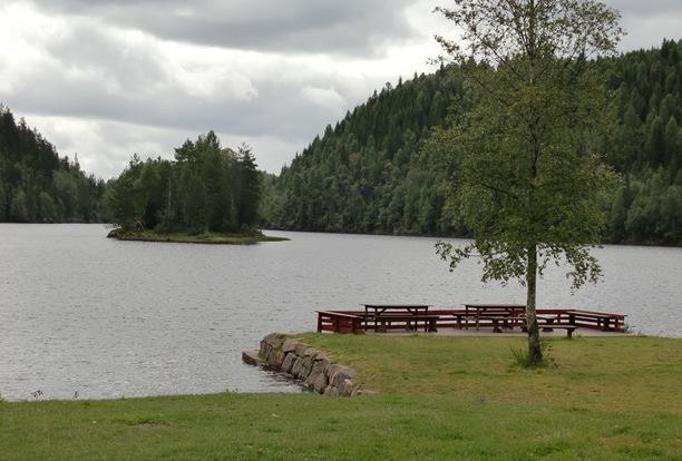Aug.Biri, DK,Trollsvann-11058