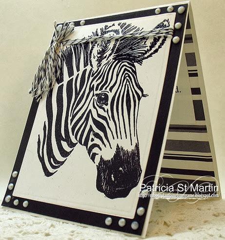 Gentle Zebra 2013  l