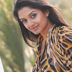Vimala Raman Actrees Photo Shoot Gallery 2012