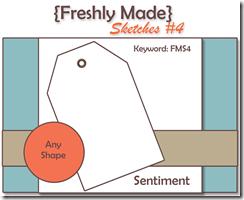 FMS Sketch 4