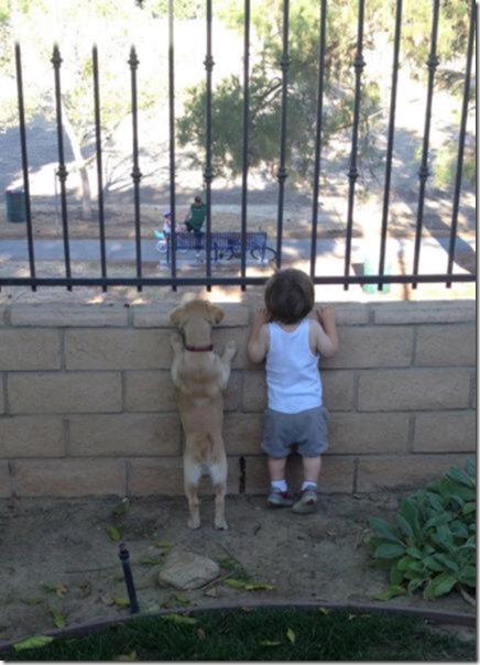 dogs-kids-best-friend-13
