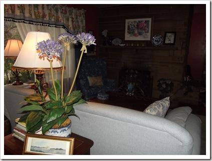 living room 11.11 004