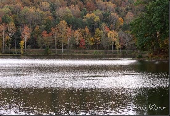 Lake_Alma5