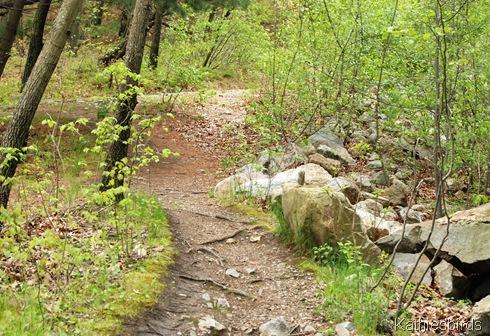 7. trail-kab