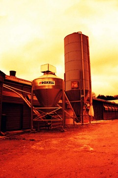 Farm-Life-26---XPRO