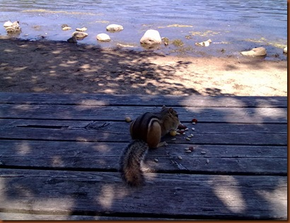 Nuttoyou au lac Hertel