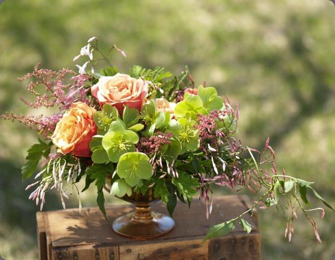 399717_10151839847733362_717231937_n alluring blooms'