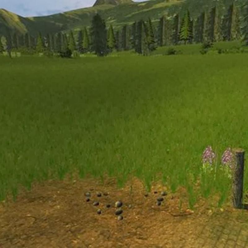 Farming simulator 2013 - Grass texture v 1.0