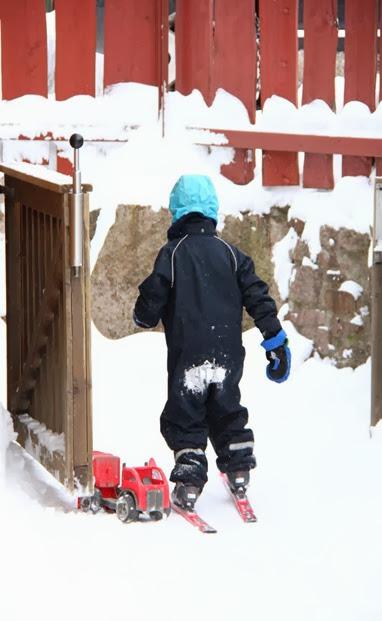 Januar20_ski_ 077 (Medium)