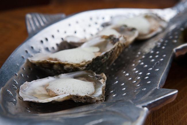 Oysters with Celery Foam