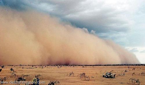 tempestade de areia desbaratinando  (9)