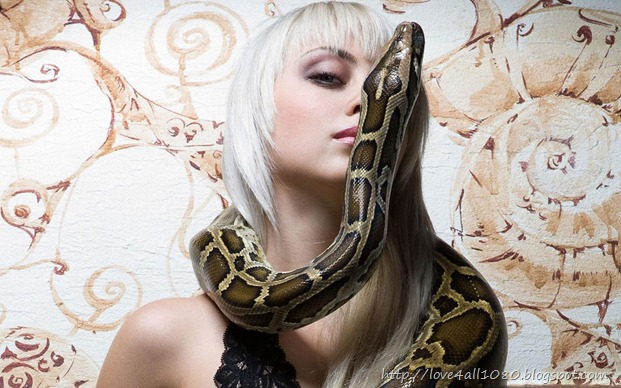 snake-quy-ty-2013-new-year (5)