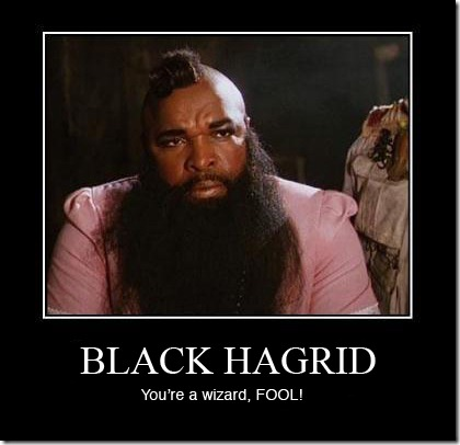 mp black hagrid mr T