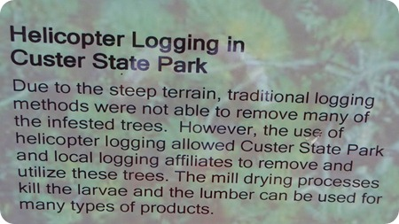 logging info