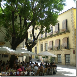 shady plaza in Jerez