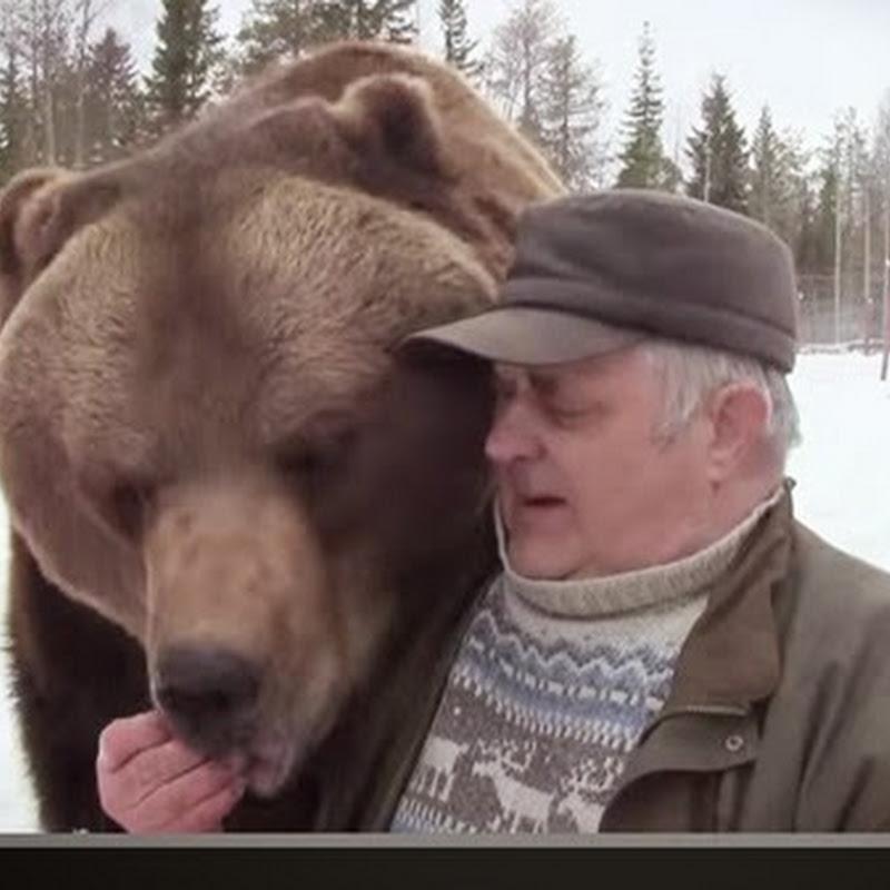 Ο ανθρωπος που μεγαλωσε  αρκουδες