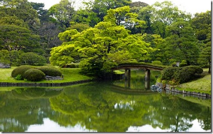 beautiful-gardens-rikugien-4