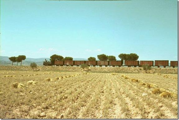 TrainCol (48)